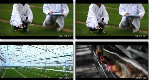 农副产品实拍片段
