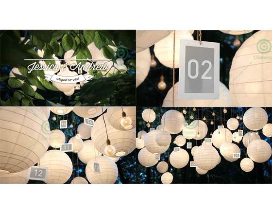 2版唯美清新的燈籠懸掛婚禮相冊AE模板