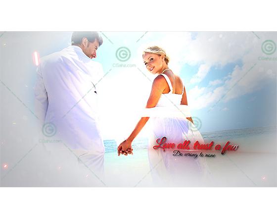 唯美浪漫的婚庆相册AE模板