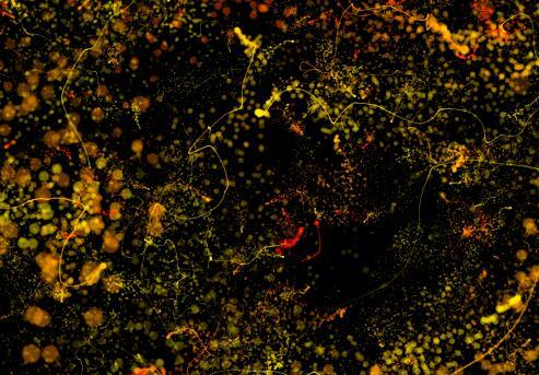 黄色粒子穿梭的视频背景素材