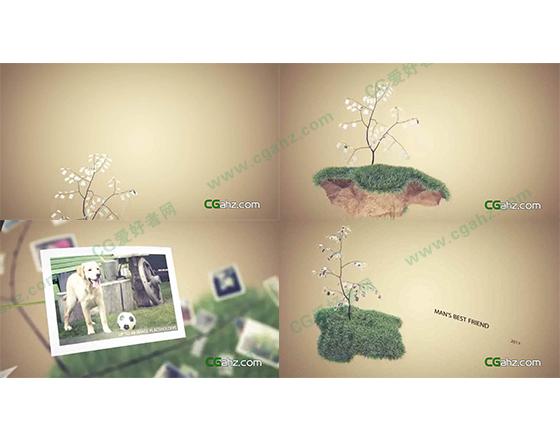 树枝上悬挂的小狗图片展示AE模板