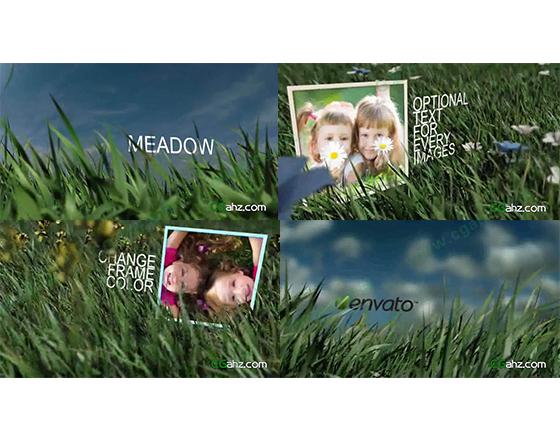 草丛中的图片展示AE模板