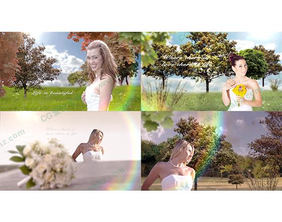 梦幻三维婚礼AE模板