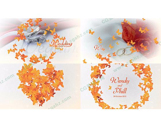 花蝶婚礼包装动画AE模板