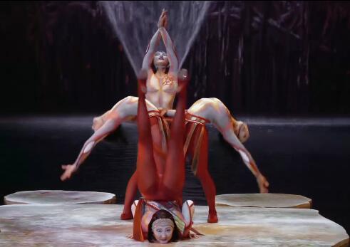 马戏团表演视频实拍