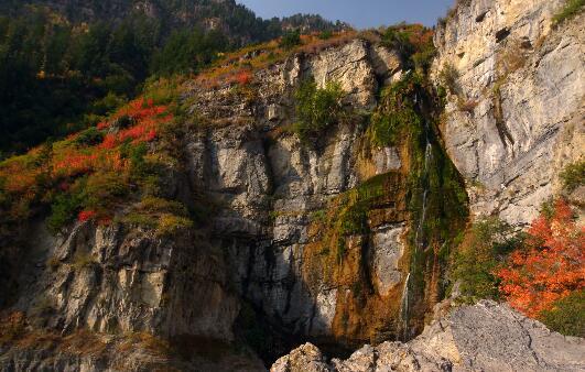 美丽的大自然视频素材4k体验