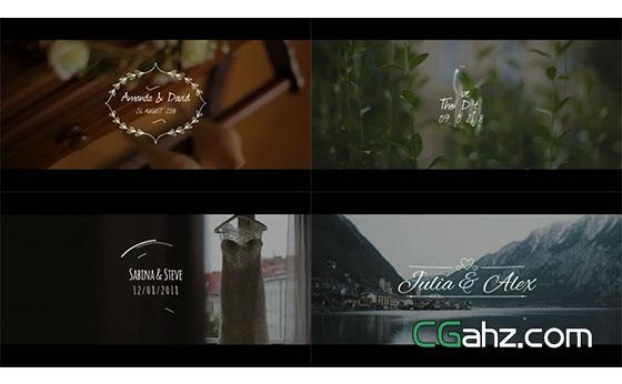 白色小清新的婚礼标签动画AE模板
