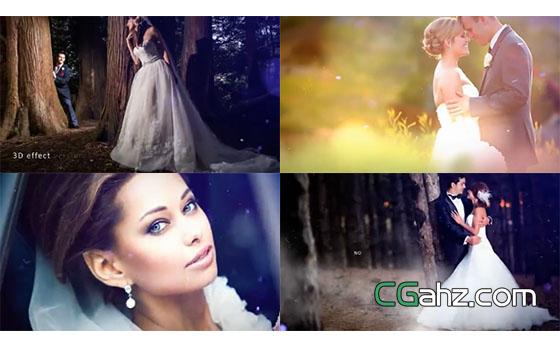 粒子微尘装饰的优雅浪漫婚礼照片AE模板