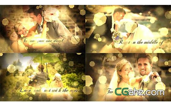 華麗的金色粒子光斑婚禮主題內容展示AE模板