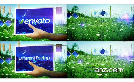 明媚春光和小花丛中的木夹照片开场AE模板