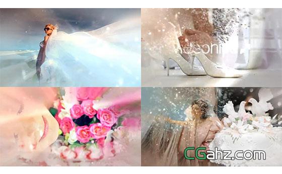 唯美花朵和粒子转场揭示下的婚礼记忆瞬间AE模板